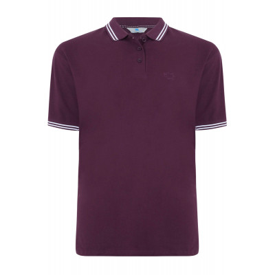 Purple Tipped Polo